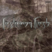 Festering Flesh - Root - Cover