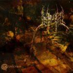 Cover - Urna – Sepulcrum
