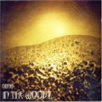 Cover - In The Woods… – Omnio