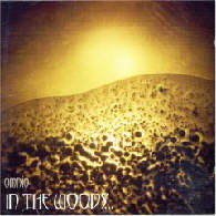 In The Woods... - Omnio - Cover