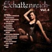 Various Artists - Schattenreich IV - CD-Cover