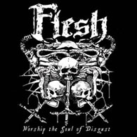 Flesh - Worship The Soul Of Disgust - Cover