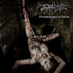 Cover - Svarttjern – Misanthropic Path Of Madness