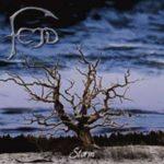 Cover - Fejd – Storm