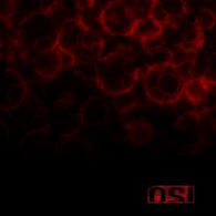 O.S.I. - Blood - Cover