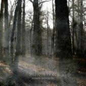Gallowbraid - Ashen Eidolon - CD-Cover