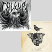 Caleya/The Hirsch Effekt - Split - CD-Cover