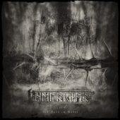 Helrunar - Sól I: Der Dorn im Nebel - CD-Cover