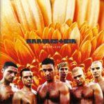 Cover - Rammstein – Herzeleid