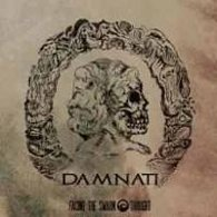 Facing The Swarm Thought - Damnati (–) - Cover