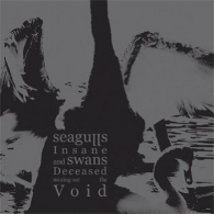 Seagulls Insane And Swans Deceased Mining Out The Void - Selbstbetitelt (+) - Cover