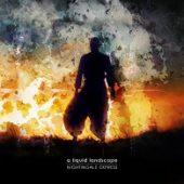 A Liquid Landscape - Nightingale Express - CD-Cover