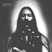 Beardfish - The Void - CD-Cover