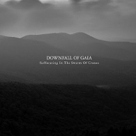 Downfall Of Gaia - Suffocating In The Swarm Of Cranes - Cover