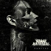 Anaal Nathrakh - Vanitas - CD-Cover