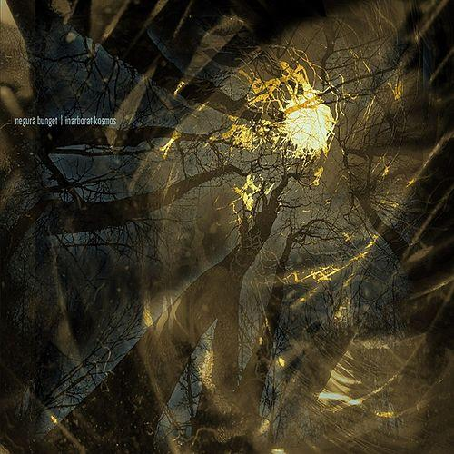 Negura Bunget - Inarborat Kosmos (EP) - Cover