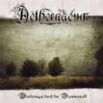 Cover - Aethernaeum  –  Wanderungen durch den Dämmerwald
