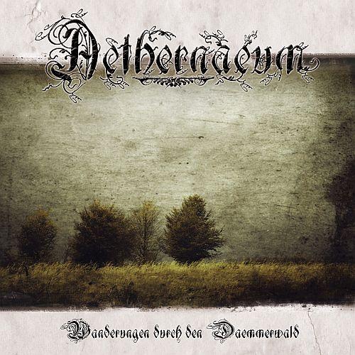 Aethernaeum - Wanderungen durch den Dämmerwald - Cover