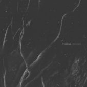 Fvnerals - Wounds - CD-Cover