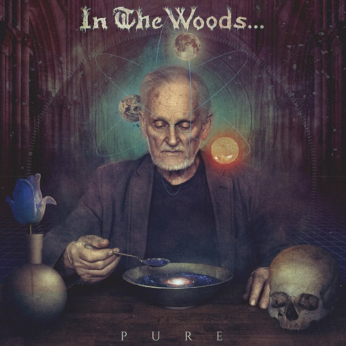 In The Woods... - Pure - Cover