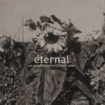 Cover - An Autumn For Crippled Children – Eternal