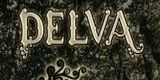 Artikel-Bild DELVA