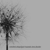 Controlled Collapse - Post-Traumatic Stress Disorder - CD-Cover