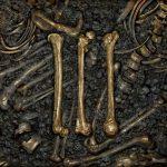 Cover - Bone Man – III