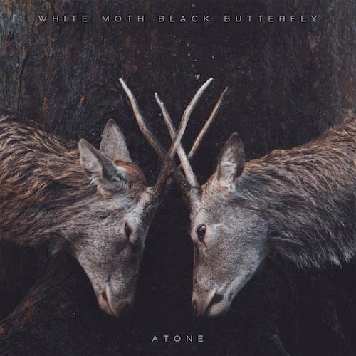 White Moth Black Butterfly - Atona - Cover
