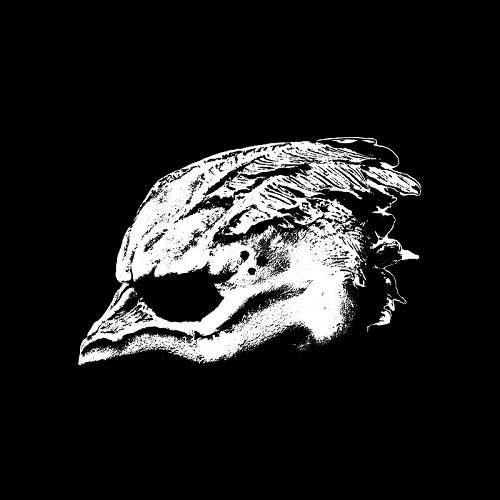 Legend Of The Seagullmen - Legend Of The Seagullmen - Cover