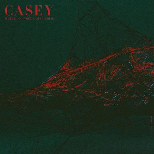 Casey - Where I Go When I Am Sleeping - Cover