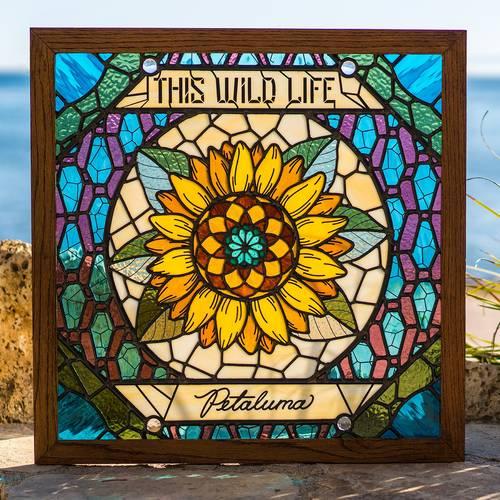 This Wild Life - Petaluma - Cover