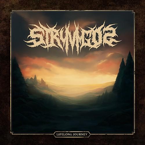 Stryvigor - Lifelong Journey - Cover