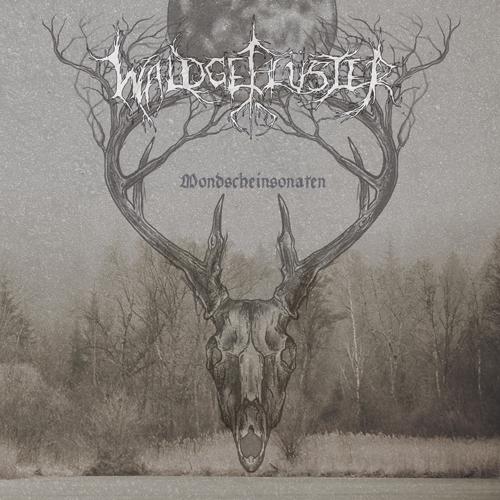 Waldgeflüster - Mondscheinsonaten - Cover