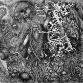 Werian - Animist - CD-Cover
