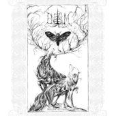 Enisum - Moth's Illusion - CD-Cover