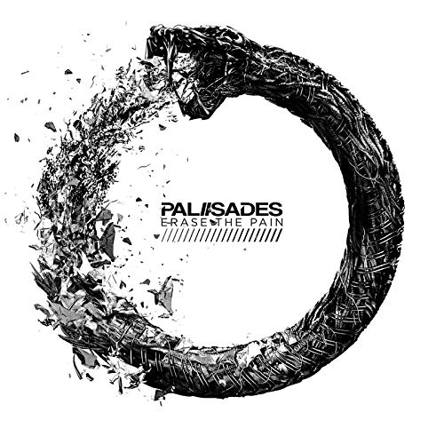 Palisades - Erase The Pain - Cover