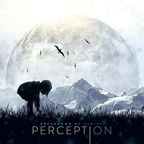 Breakdown Of Sanity - Perception - Cover