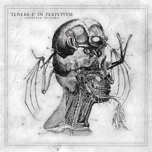 Tenebrae In Perpetuum - Anorexia Obscura - Cover