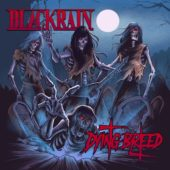 Blackrain - Dying Breed - CD-Cover