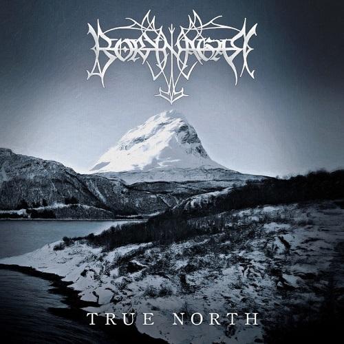 "Das Cover des Borknagar-Albums ""True North"""