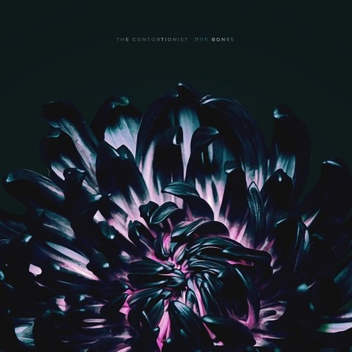 The Contortionist - Our Bones (EP) - Cover