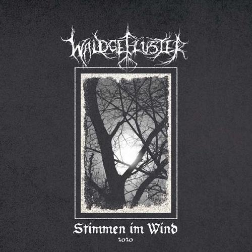 Waldgeflüster - Stimmen im Wind 2020 - Cover