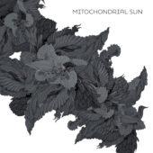 Mitochondrial Sun - Mitochondrial Sun - CD-Cover