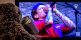 Festival Bild Live-Konzerte im Stream
