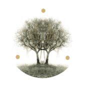 Lili Refrain - Ulu - CD-Cover