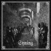 Syning - Syning - CD-Cover