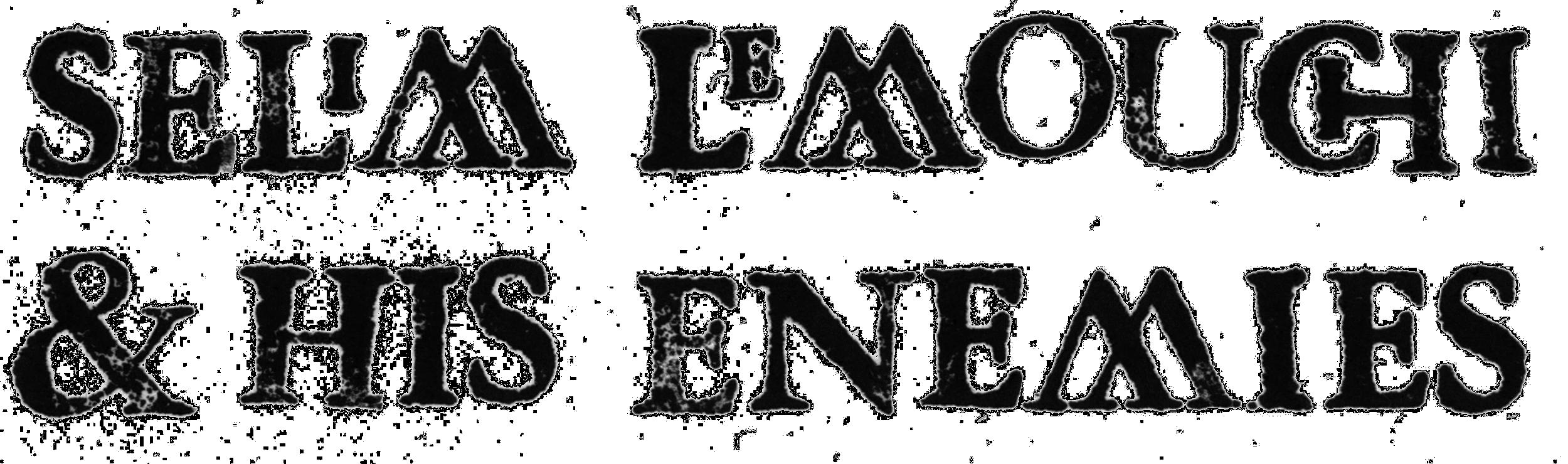 selim logo