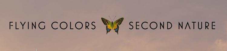 Flying_Colors_Konzertbericht_2014_Header