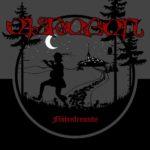 Cover - Eisregen – Flötenfreunde (EP)
